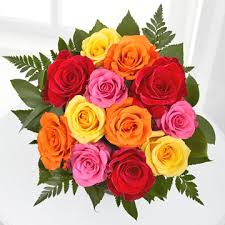 next day flowers one dozen assorted color roses discount next day flowers online