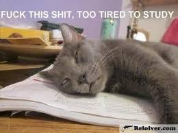 Too Tired Meme - too tired meme memes http relolver com too tired meme