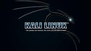 kali linux apk free kali linux hacking tools