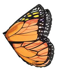 how to make wings for halloween amazon com orange monarch wings toys u0026 games