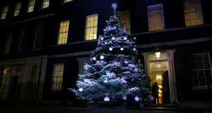 photos christmas trees from around the world kval