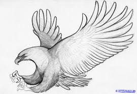 how to sketch an eagle in pencil draw an eagle bird step by step