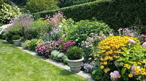 creating eco friendly borders your easy garden