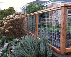 Backyard Fence Ideas Backyard Backyard Fencing Ideas For Dogs Wonderful Backyard