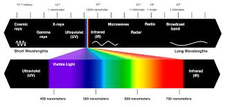 your color perception changes with the seasons d brief