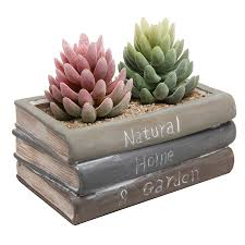 succulent planter amazon com vintage style ceramic stacked book design succulent