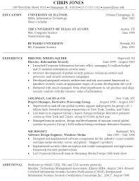 Technology Resume Template 8 Best Best It Director Resume Templates Samples Images Skills