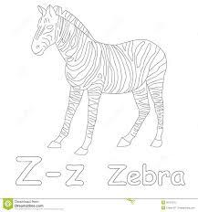 z for zebra coloring page stock illustration image 39701575
