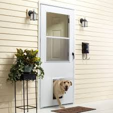 cat door wellington u0026 petway access door u2013 standard size