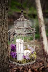 bird cage decoration using bird cages for decor 66 beautiful ideas digsdigs