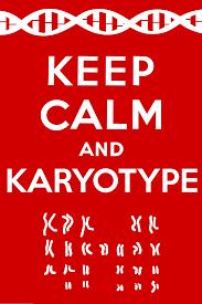 Original Keep Calm Meme - keep calm and karyotype keep calm and carry on know your meme