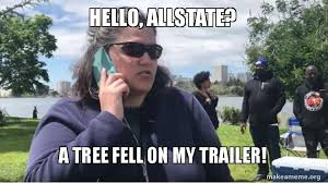 Allstate Meme - hello allstate a tree fell on my trailer make a meme