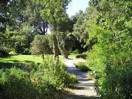 Quail Botanical Gardens Encinitas California Diego Botanic Garden