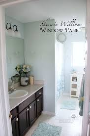 sherwin williams windowpane paint color in my master bath redo