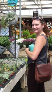 763 best house plants home decor ideas from the barn nursery