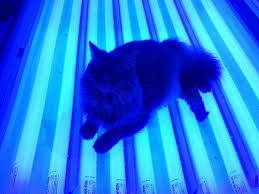 Tanning Bed Rash Pictures Looking Beautiful With Help From A Tanning Bed Tips For Tanning