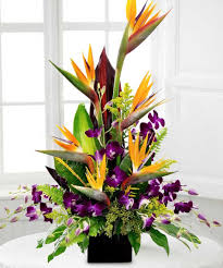birds of paradise flower tropical splendor birds of paradise and orchid bouquet