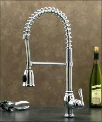 Kitchen Sink Sprayer Hose Repair Kitchen Faucet Sprayer Hose Repair Best Of Kitchen Sink Hose
