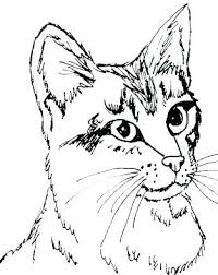 warrior cats coloring pages sad coloring pages of cats free cat coloring pages packed with kitten