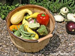 Types Of Vegetable Gardening by How Much To Plant Per Person In The Vegetable Garden