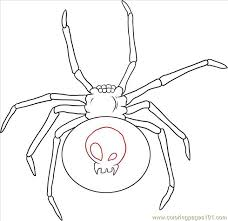 black widow spider step 4 coloring free spider coloring