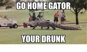 Gator Meme - go home gator your drunk drinking meme on esmemes com