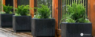 Miracle Grow Patio by Planting Container Evergreens Patio Paver Planters Bystephanielynn