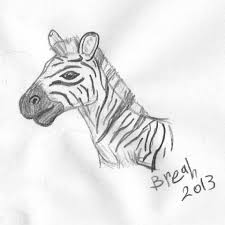 zebra sketch u2013 art by breah