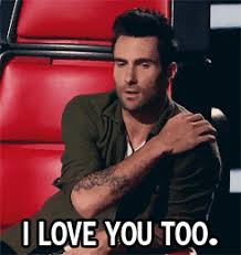 Adam Levine Meme - gifs my gif 2 adam levine the voice blake shelton everything adam