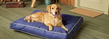 custom dog beds