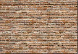 Komar Wall Mural Wall 8 741 Wall Mural By Komar