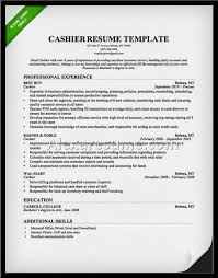 Professional Summary Resume Examples by Professional Summary For Resume Examples
