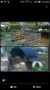 17 best horses images on pinterest horses horse shelter and