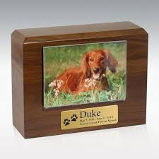 cremation urns for pets walnut photo pet cremation urn