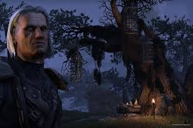 Elder Scrolls Online Memes - how the elder scrolls can save online rpgs