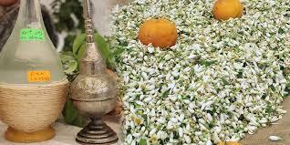 eau de fleur d oranger cuisine du festival d eau de fleurs d oranger ã nabeul du 7 au 9 avril
