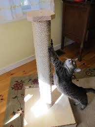 Modern Cat Scratching Post Giveaway Vertical Scratching Post And Perch From Mountain Cat Trees