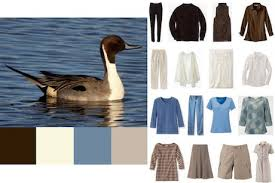 gafunkyfarmhouse this n that thursdays animal themed gafunkyfarmhouse this n that thursdays pintail duck 4x4 wardrobe