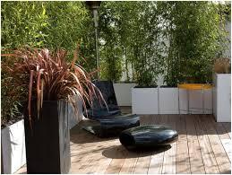Backyard Screens Outdoor by Backyards Awesome Backyard Screen Ideas Diy Outdoor Privacy
