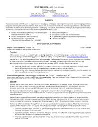 Erp Implementation Resume Sample by Download Business Intelligence Resume Haadyaooverbayresort Com