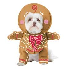 costumes for dogs gingerbread pup dog costume with same day shipping baxterboo