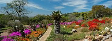 Kirstenbosch Botanical Gardens Kirstenbosch Botanical Gardens Cape Town
