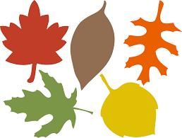 printable leaves google zoeken printables bladeren leaves