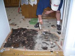 Remove Floor Tiles From Concrete Change Happens May 2010