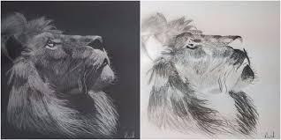 inverted sketch of a lion by iamdas man on deviantart