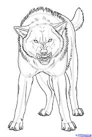 13 images of angry wolf pups coloring pages angry wolf coloring