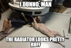 Mechanic Meme - the dog mechanic fathead
