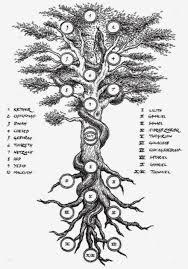 bensozia trees of knowledge