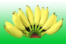 เรื่องกล้วยๆ..แต่รวยสุขภาพ