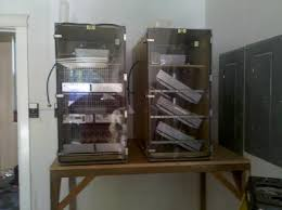 Used Cabinet Incubator For Sale Cheepest Place To Buy 1502 Sportsman Incubator Backyard Chickens